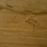 Sandstone Ita Gold semilastre 3126